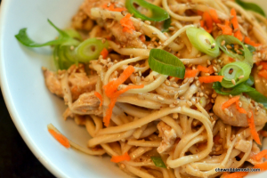 Sesame Noodles with Shredded Chicken - Chew Nibble Nosh