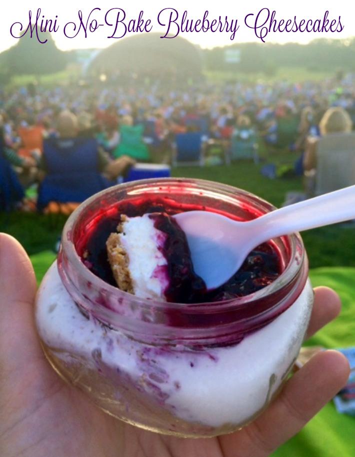Mini No-Bake Blueberry Cheesecakes - Chew Nibble Nosh
